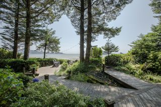 Photo 6: 1327 Chesterman Beach Rd in TOFINO: PA Tofino Single Family Detached for sale (Port Alberni)  : MLS®# 831156