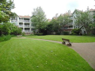 "Photo 13: 409 9668 148 Street in Surrey: Guildford Condo for sale in ""Hartford Woods"" (North Surrey)  : MLS®# R2450892"
