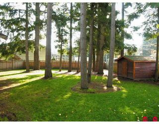 "Photo 10: 4413 208A Street in Langley: Brookswood Langley House for sale in ""Cedar Ridge"" : MLS®# F2727832"