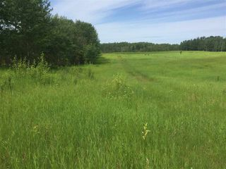 Photo 1: TWP RD 550 & RGE RD 203: Rural Strathcona County Rural Land/Vacant Lot for sale : MLS®# E4166392