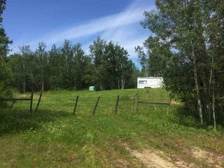 Photo 3: TWP RD 550 & RGE RD 203: Rural Strathcona County Rural Land/Vacant Lot for sale : MLS®# E4166392