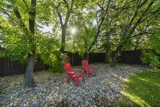 Photo 26: 3863 51 Street in Edmonton: Zone 29 House for sale : MLS®# E4171569