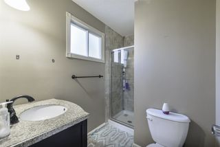 Photo 19: 3863 51 Street in Edmonton: Zone 29 House for sale : MLS®# E4171569