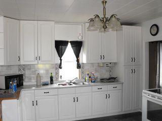 Photo 6: 4833 52 Street: Elk Point House for sale : MLS®# E4171801