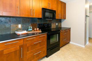 Main Photo: 202 10432 76 Avenue in Edmonton: Zone 15 Condo for sale : MLS®# E4174203