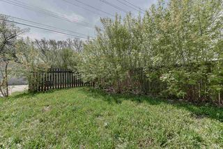 Photo 9: 10961 76 Avenue in Edmonton: Zone 15 House for sale : MLS®# E4198136