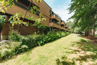 """Photo 17: 101 333 WETHERSFIELD Drive in Vancouver: South Cambie Condo for sale in """"LANGARA COURT"""" (Vancouver West)  : MLS®# R2467887"""