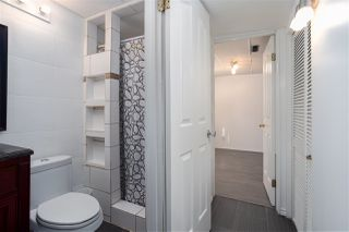 Photo 18: 4103 18 Avenue in Edmonton: Zone 29 House for sale : MLS®# E4213630
