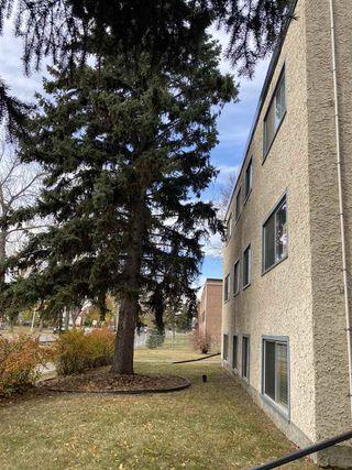 Photo 1: 4 15916 109 Avenue in Edmonton: Zone 21 Condo for sale : MLS®# E4217869