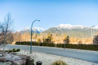 Photo 34: 41368 TANTALUS ROAD in Squamish: Tantalus House for sale : MLS®# R2456583