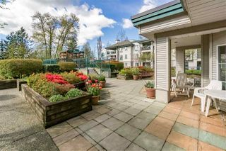 """Photo 26: 337 19528 FRASER Highway in Surrey: Cloverdale BC Condo for sale in """"The Fairmont"""" (Cloverdale)  : MLS®# R2520413"""