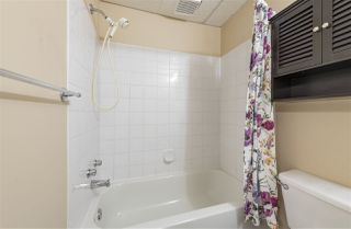 Photo 27: 2035 TANNER Wynd in Edmonton: Zone 14 House for sale : MLS®# E4224894