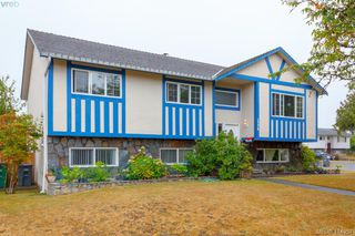 Main Photo: 1776 Angola Place in VICTORIA: SE Gordon Head Single Family Detached for sale (Saanich East)  : MLS®# 414951