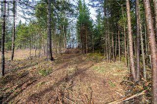 Photo 10: Lot 15-04 Meadow Lane in Sackville: Vacant Land for sale : MLS®# M127089