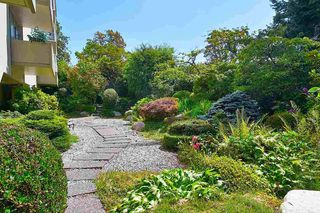"Photo 5: 412 1425 ESQUIMALT Avenue in West Vancouver: Ambleside Condo for sale in ""Oceanbrook"" : MLS®# R2469530"