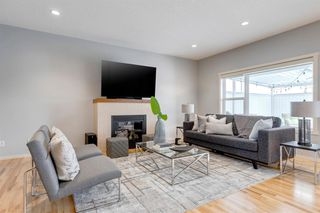 Photo 20: 4743 ELGIN Avenue SE in Calgary: McKenzie Towne Detached for sale : MLS®# A1036240