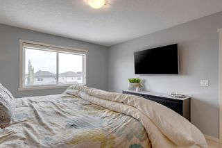 Photo 33: 4743 ELGIN Avenue SE in Calgary: McKenzie Towne Detached for sale : MLS®# A1036240