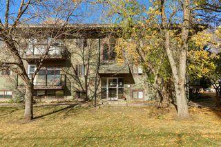 Photo 16: 8 10172 113 Street in Edmonton: Zone 12 Condo for sale : MLS®# E4218071