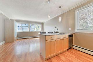 Photo 7: 8 10172 113 Street in Edmonton: Zone 12 Condo for sale : MLS®# E4218071