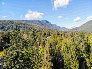 Photo 39: 3993 LYNN VALLEY Road in North Vancouver: Lynn Valley House for sale : MLS®# R2514212