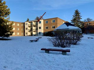 Photo 1: 306 11445 41 Avenue in Edmonton: Zone 16 Condo for sale : MLS®# E4224634
