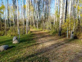 Photo 18: TWP RD 633 RGE RD 261A: Rural Westlock County Rural Land/Vacant Lot for sale : MLS®# E4177294