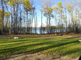 Photo 21: TWP RD 633 RGE RD 261A: Rural Westlock County Rural Land/Vacant Lot for sale : MLS®# E4177294