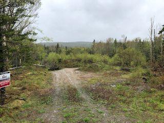 Main Photo: Gabarus Lake Road in Gabarus Lake: 206-Louisbourg Vacant Land for sale (Cape Breton)  : MLS®# 202009448