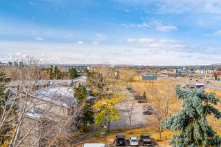 Photo 18: 633 30 Mchugh Court NE in Calgary: Mayland Heights Apartment for sale : MLS®# A1042701
