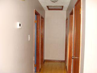 Photo 15: 10713 155 Street in Edmonton: Zone 21 House for sale : MLS®# E4216852