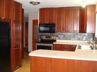 Photo 6: 10713 155 Street in Edmonton: Zone 21 House for sale : MLS®# E4216852