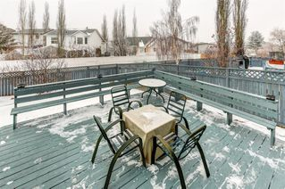 Photo 32: 97 Harvest Park Circle NE in Calgary: Harvest Hills Detached for sale : MLS®# A1049727