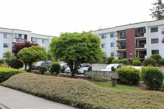 "Main Photo: 310 33490 COTTAGE Lane in Abbotsford: Central Abbotsford Condo for sale in ""Cottage Lane"" : MLS®# R2393160"
