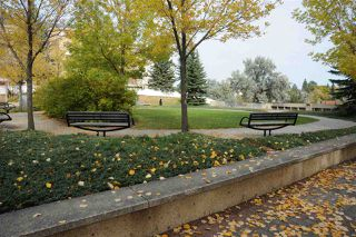 Photo 25: 420 11260 153 Avenue in Edmonton: Zone 27 Condo for sale : MLS®# E4176028