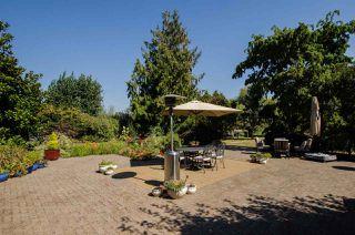 Photo 17: 3560 40 Street in Delta: Ladner Rural House for sale (Ladner)  : MLS®# R2433594