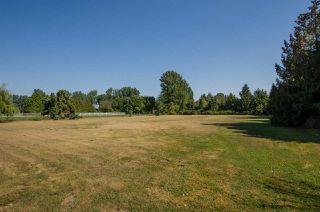 Photo 20: 3560 40 Street in Delta: Ladner Rural House for sale (Ladner)  : MLS®# R2433594