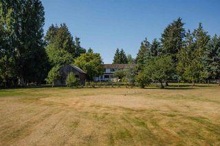 Photo 19: 3560 40 Street in Delta: Ladner Rural House for sale (Ladner)  : MLS®# R2433594