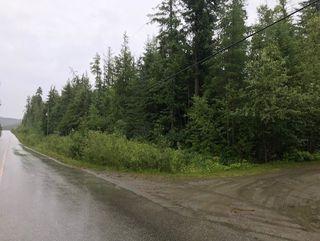 Photo 8: Lot #2 Eagle Bay Road: Eagle Bay Vacant Land for sale (Shuswap Lake)  : MLS®# 10187525