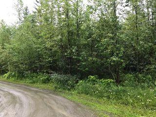Photo 12: Lot #2 Eagle Bay Road: Eagle Bay Vacant Land for sale (Shuswap Lake)  : MLS®# 10187525
