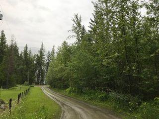 Photo 11: Lot #2 Eagle Bay Road: Eagle Bay Vacant Land for sale (Shuswap Lake)  : MLS®# 10187525