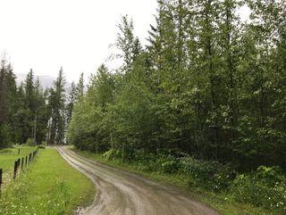 Photo 10: Lot #2 Eagle Bay Road: Eagle Bay Vacant Land for sale (Shuswap Lake)  : MLS®# 10187525