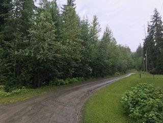 Photo 9: Lot #2 Eagle Bay Road: Eagle Bay Vacant Land for sale (Shuswap Lake)  : MLS®# 10187525