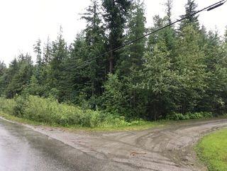 Photo 6: Lot #2 Eagle Bay Road: Eagle Bay Vacant Land for sale (Shuswap Lake)  : MLS®# 10187525