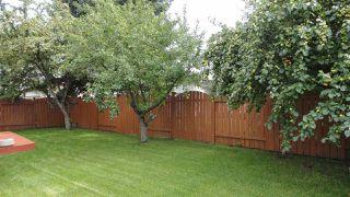 Photo 28: 1422 104 Street NW in Edmonton: Zone 16 House for sale : MLS®# E4168325