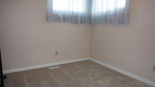 Photo 19: 1422 104 Street NW in Edmonton: Zone 16 House for sale : MLS®# E4168325
