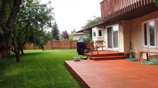 Photo 25: 1422 104 Street NW in Edmonton: Zone 16 House for sale : MLS®# E4168325
