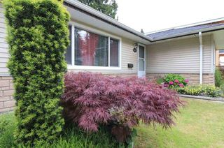 Photo 11: 11265 LOUGHREN Drive in Surrey: Bolivar Heights House for sale (North Surrey)  : MLS®# R2428434