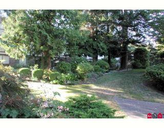 Photo 1: 306 1520 Vidal Street: White Rock Condo for sale (White Rock & District)  : MLS®# F2625387