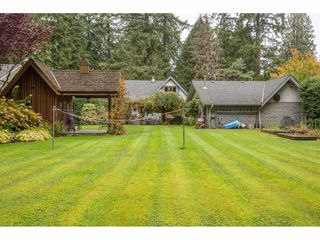 """Photo 18: 21528 124 Avenue in Maple Ridge: West Central House for sale in """"SHADY LANE"""" : MLS®# R2417796"""