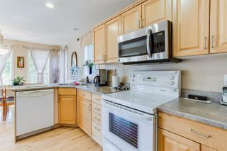 Photo 12: 9511 81 Avenue in Edmonton: Zone 17 House for sale : MLS®# E4183396